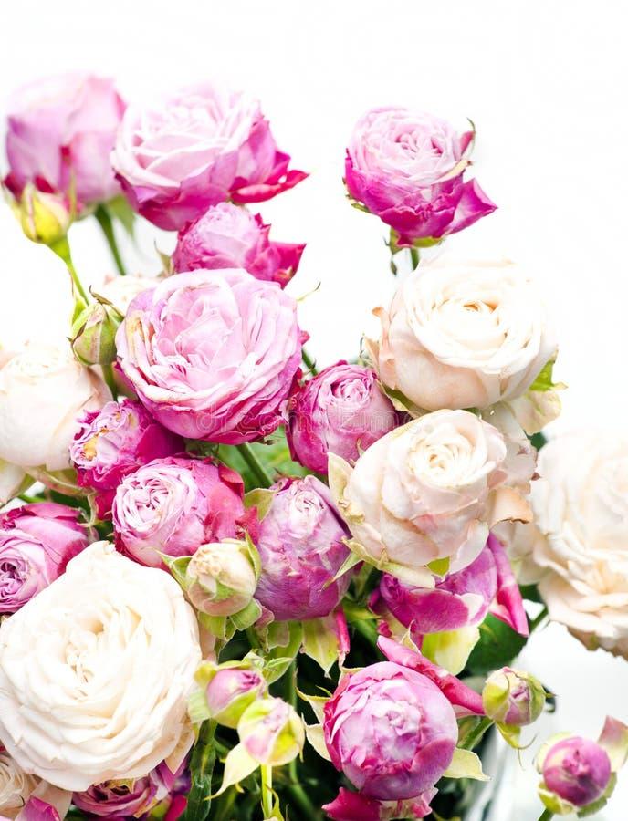 Состав конца-вверх флористический с розами пиона стоковое изображение