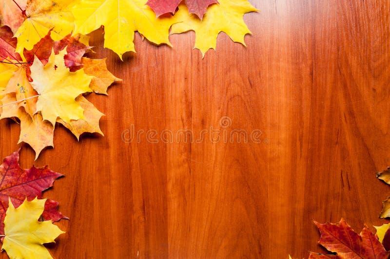 Состав осени Рамка сделанная из листьев осени на деревянной предпосылке стоковые фото