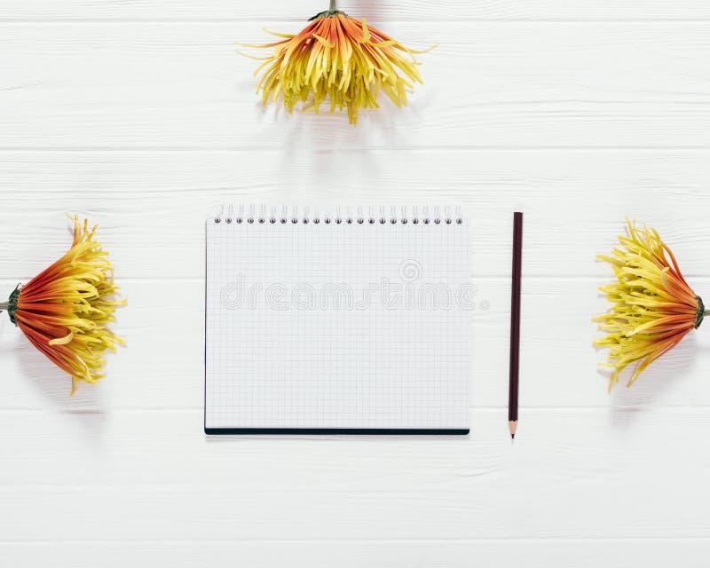 Состав открытого пустого листа блокнота среди желтого и оранжевого стоковые фото