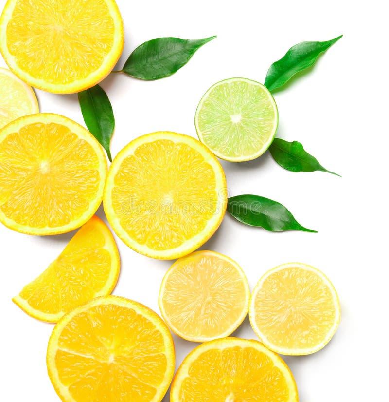 Состав очень вкусных цитрусовых фруктов и зеленых листьев на белой предпосылке стоковое изображение rf