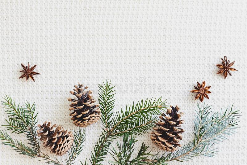Состав рождества и Нового Года Ель разветвляет с конусами, анисовкой звезды на связанной белой предпосылке стоковые изображения rf