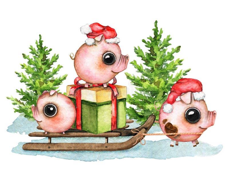 Состав с поросятами, подарочная коробка акварели, сани, снег и бесплатная иллюстрация