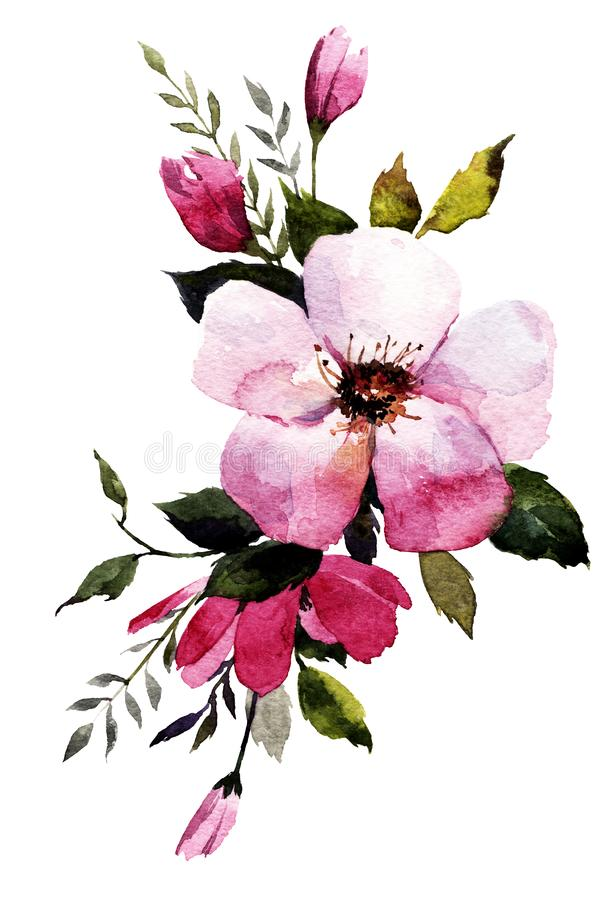 состав цветков пинка акварели, листьев бесплатная иллюстрация