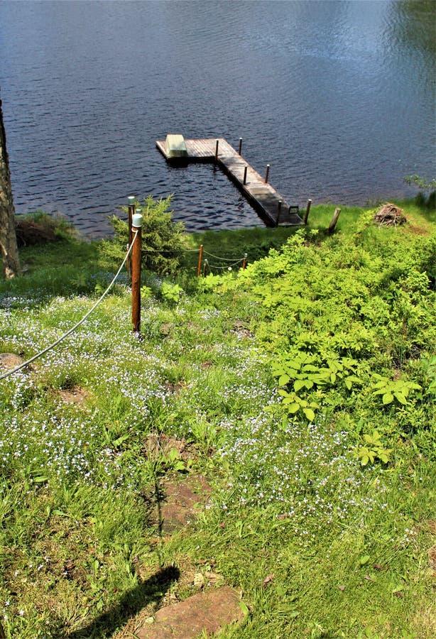 Состыкуйте на пруде Леонарда расположенном в Childwold, Нью-Йорке, Соединенных Штатах стоковая фотография