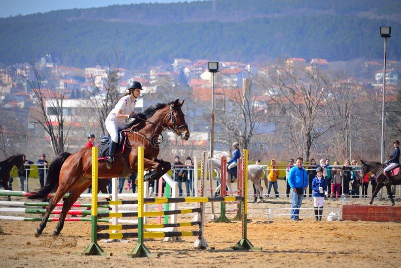 Состязание лошади девушки Equitation скача стоковые изображения rf