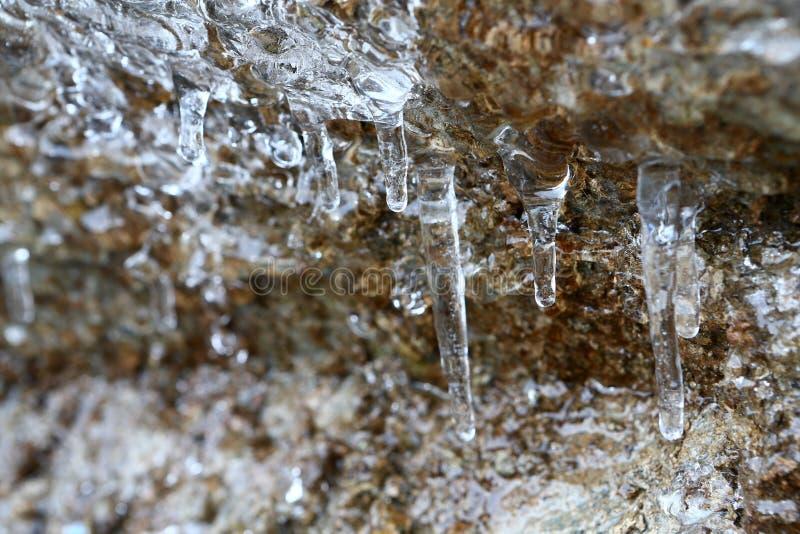 Сосульки таять с падая водой падают в горы стоковое фото rf