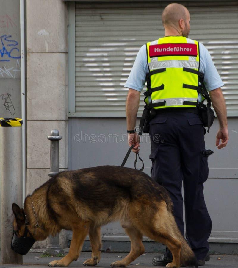 Сотрудник охраны с собакой стоковое фото rf