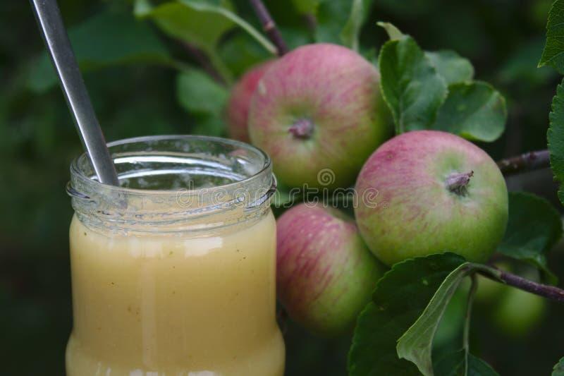 Соус Яблока на яблоне стоковое изображение