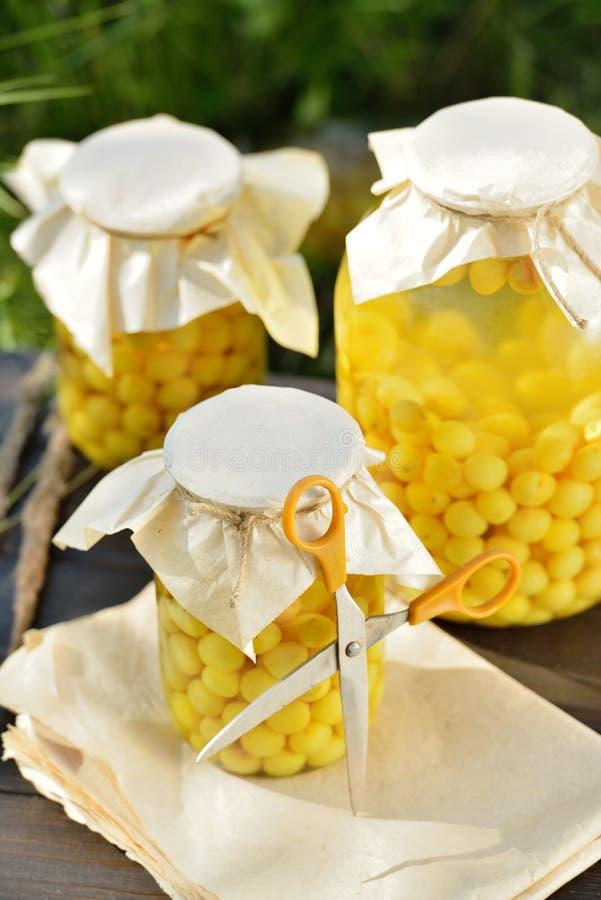 Сохраненный плодоовощ, компот кислых вишен стоковое изображение