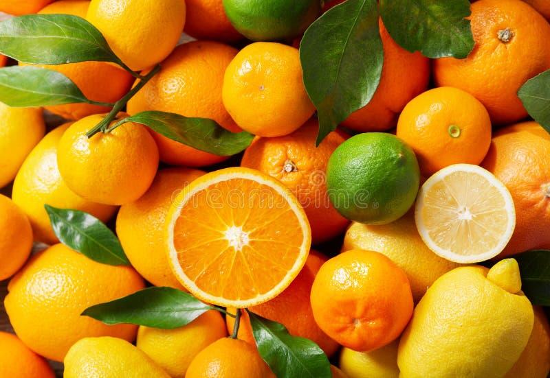 Сочетание свежих фруктов в качестве фона стоковые фото