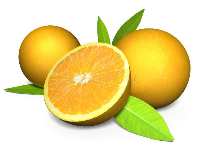 сочные апельсины 3D при поперечное сечение показывая плодоовощ бесплатная иллюстрация