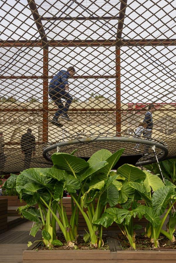 Сочные заводы под павильоном Бразилии воздушной прогулки внутренним, ЭКСПО 2015 стоковое изображение rf