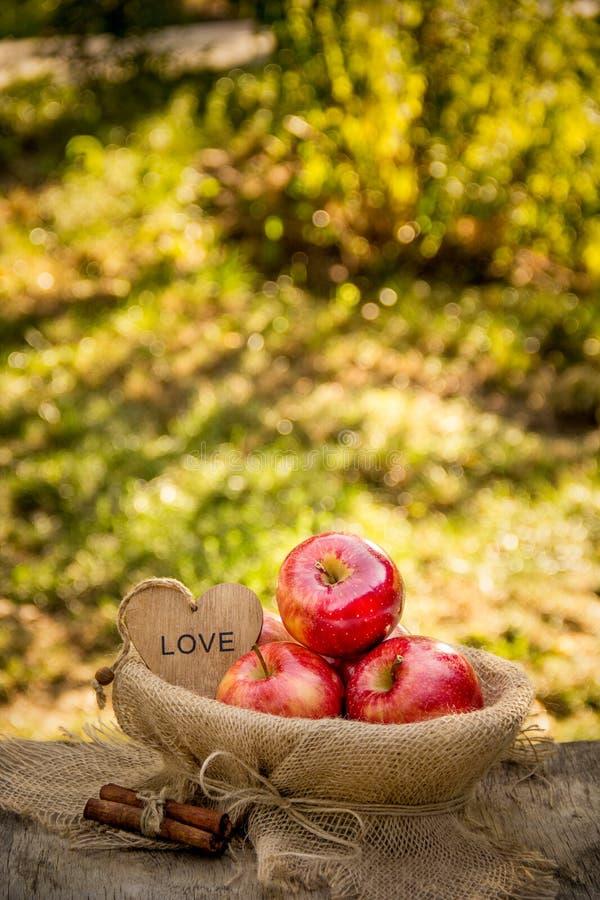 Сочные зрелые яблоки в корзине на естественной естественной предпосылке красный цвет яблок органический стоковое изображение