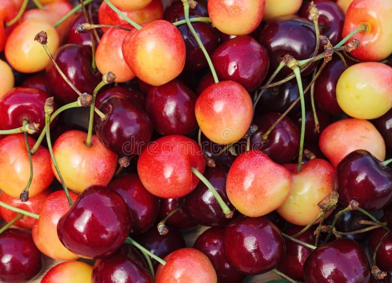 Сочные сладостные вишни стоковая фотография rf