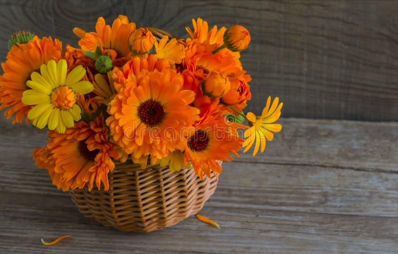 Сочный оранжевый букет цветков calendula в корзине на деревянной предпосылке с экземпляром космоса стоковые фото