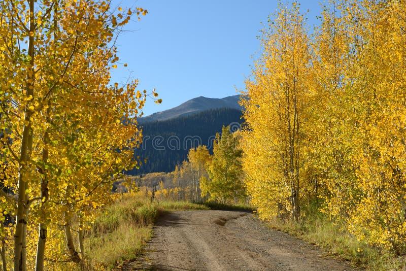 Солнечная дорога горы осени стоковое фото rf