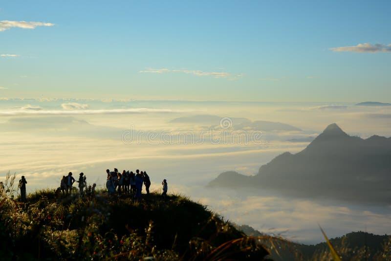 Солнечное утро с туманом стоковое фото