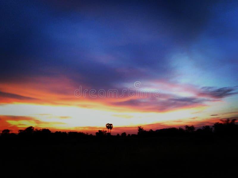 Солнечность стоковая фотография rf