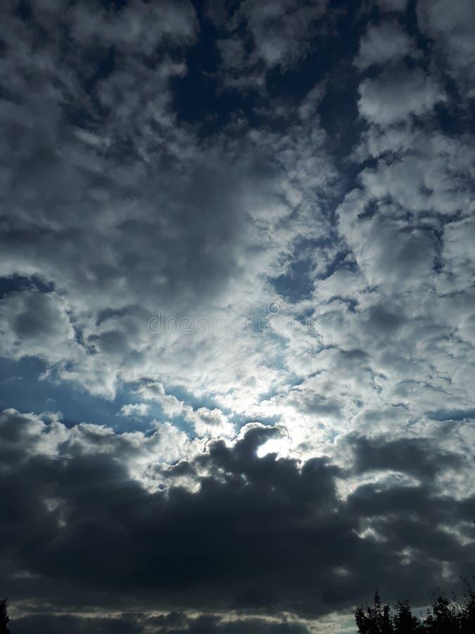 Солнечность Translucend стоковое изображение rf