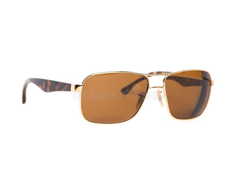 Солнечные очки авиатора стоковые фото