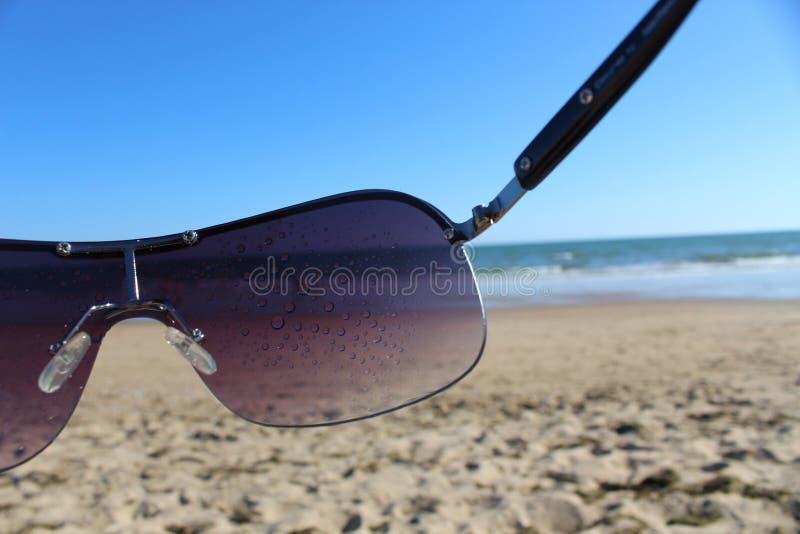 Солнечные очки в пляже стоковые фотографии rf