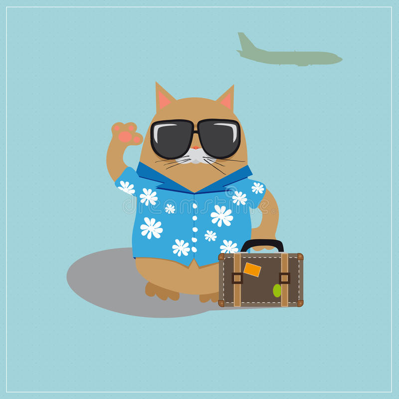 Солнечные очки кота туристские нося и рубашка с стоковые фотографии rf