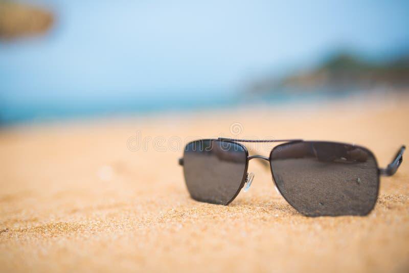 Солнечные очки на береге стоковое фото
