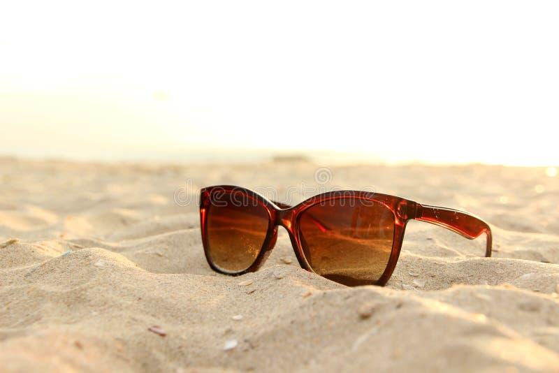 Солнечные очки на пляже стоковые изображения rf