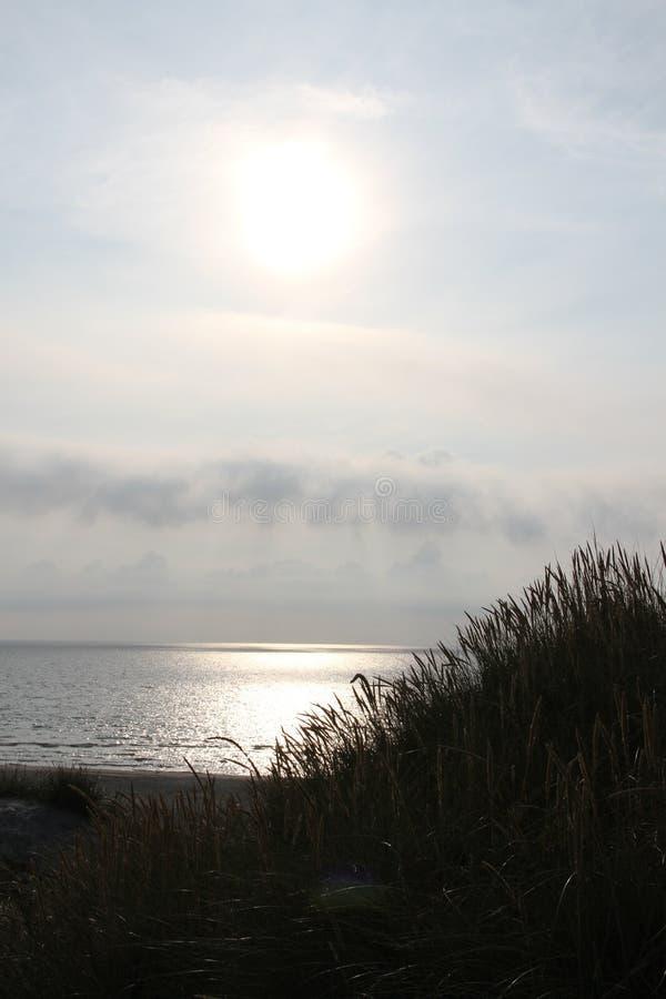 Солнечные дюны стоковое изображение rf