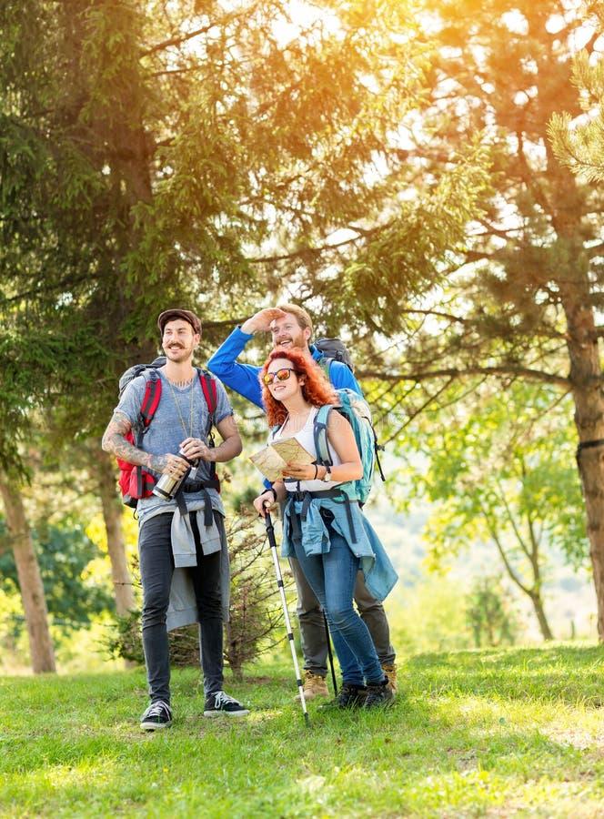 Солнечный день в лесе во время hikers ломает от длинной пути стоковое фото rf