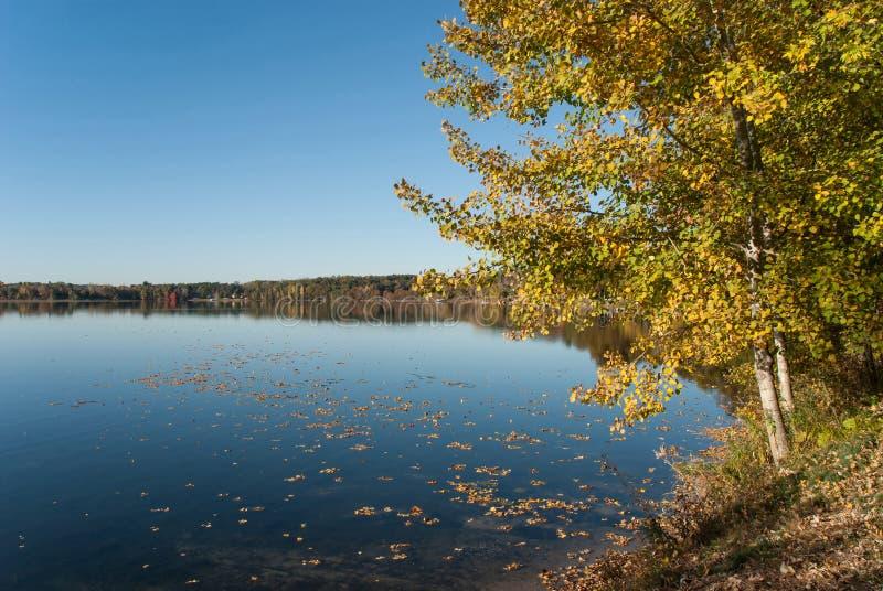Солнечный день осени на lakeshore, Висконсин, США стоковое фото