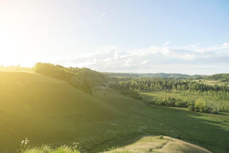 Солнечный зеленый ландшафт стоковые фото