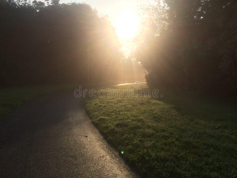 Солнечный путь стоковое фото rf