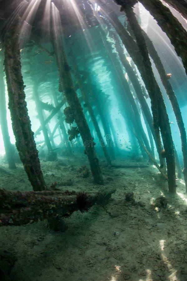 Солнечный свет и мола подводные стоковая фотография rf