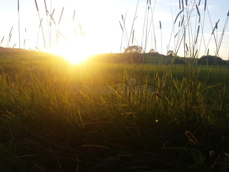 Солнца поднимая снова стоковые фото