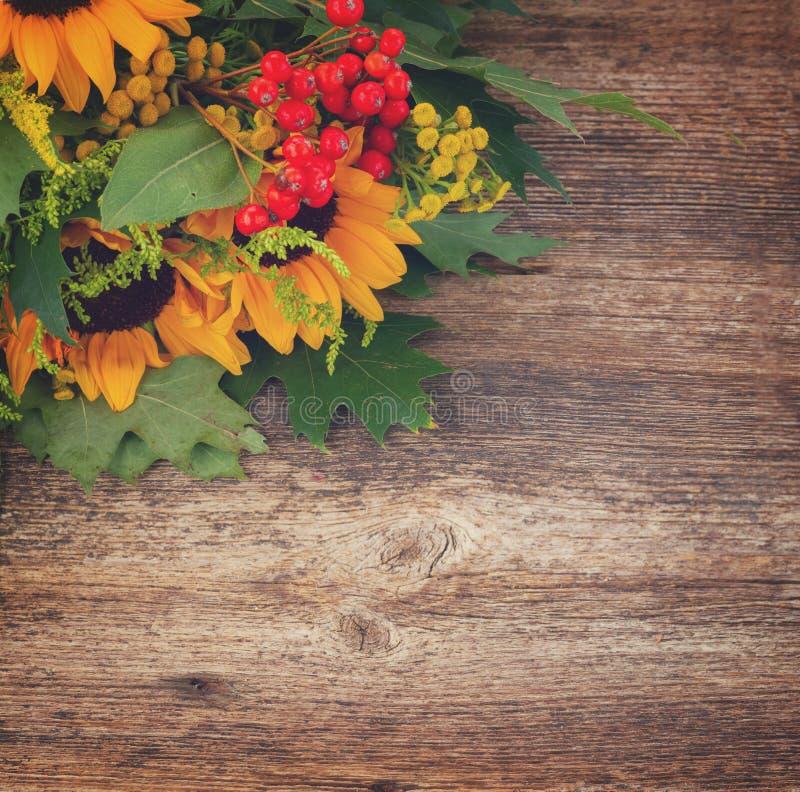 Солнцецветы с зелеными листьями стоковые изображения rf