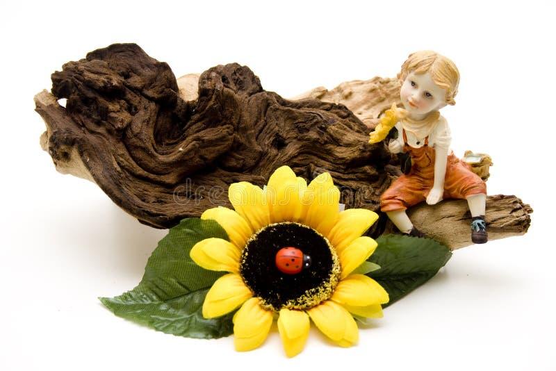 Солнцецвет с жуком стоковая фотография rf