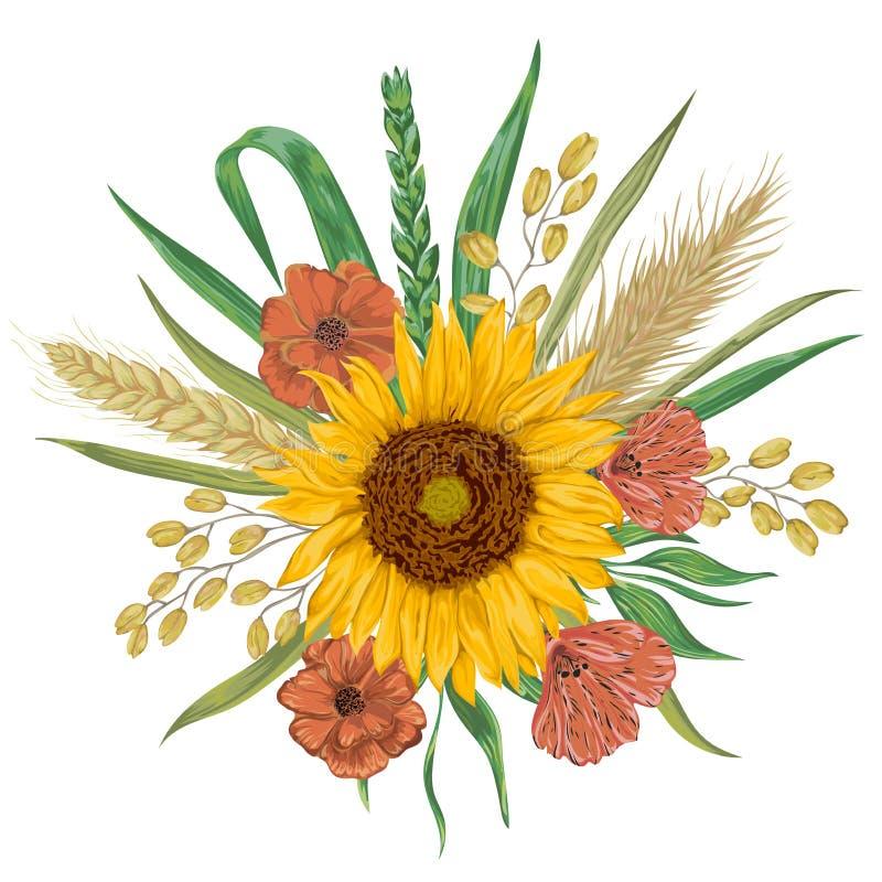 Солнцецвет, ячмень, пшеница, рожь, рис, мак Элементы флористического дизайна собрания декоративные иллюстрация вектора