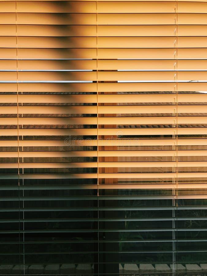 Солнце от шторок стоковая фотография