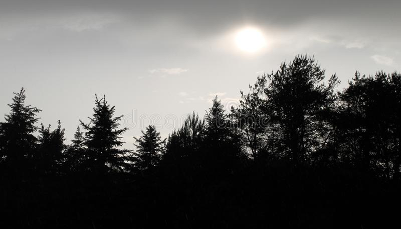 Солнце светя через облачное небо стоковое фото