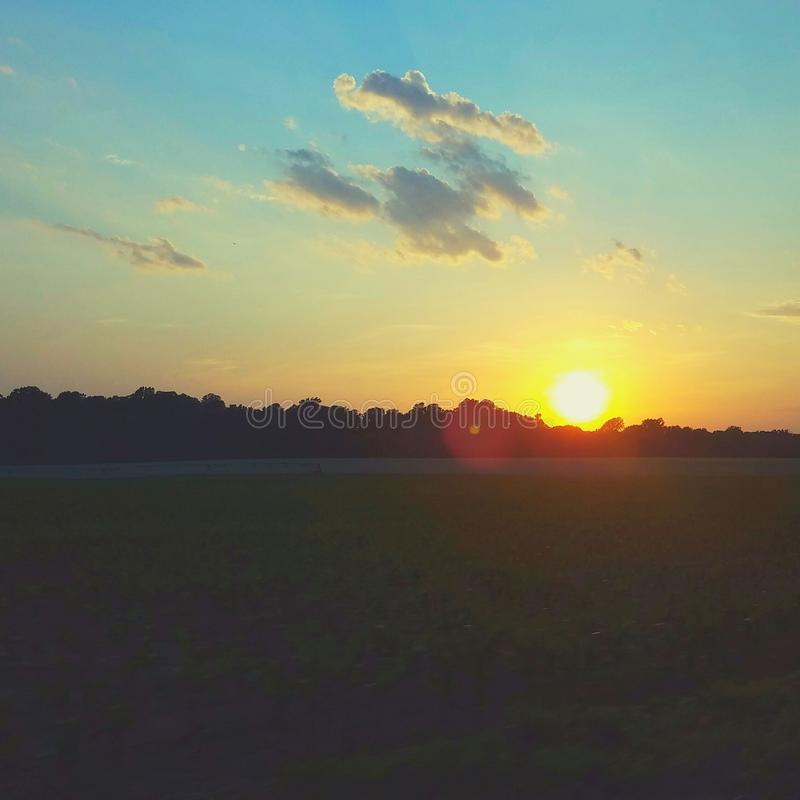 Солнце установило над кукурузным полем стоковые фотографии rf