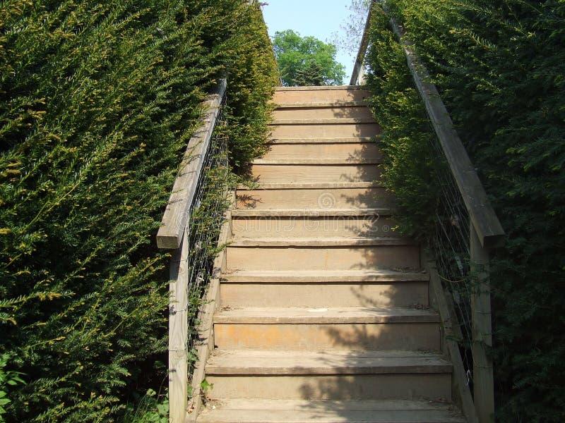 солнце stairway к стоковая фотография rf