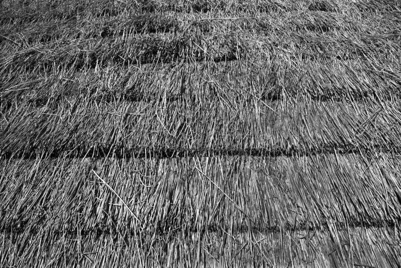 Соломенная крыша Стоковая Фотография RF