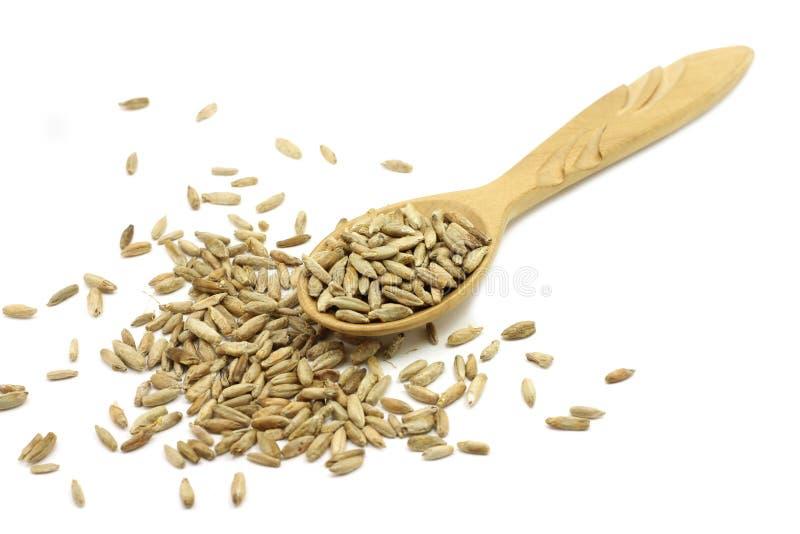 Солод рож зерна в деревянной ложке стоковое фото rf