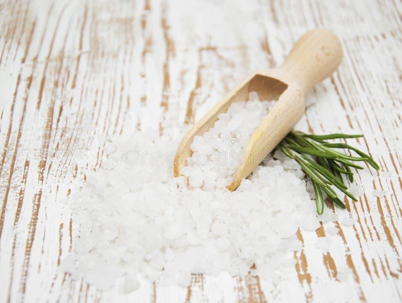 Соль и розмариновое масло стоковое изображение rf