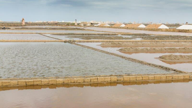 Соль моря и и соленое болото в Нубии стоковые изображения