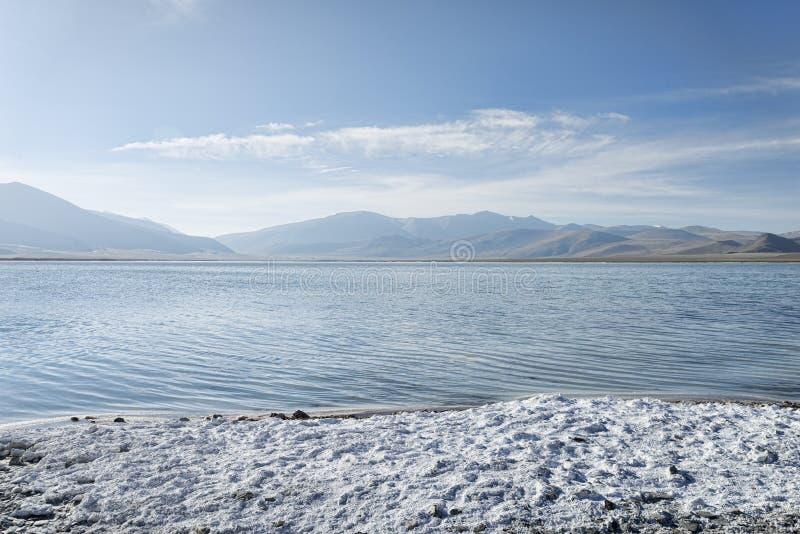 Соль на побережье озера горы стоковое изображение rf