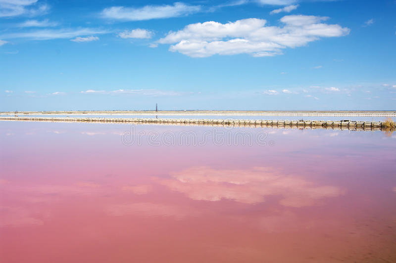 соль озера розовое стоковые фото