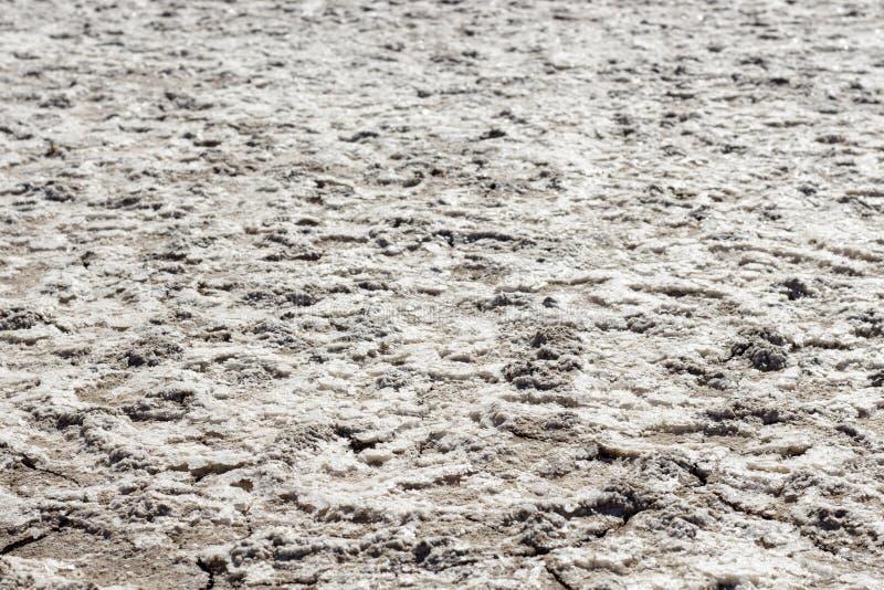 Соль по причине высушенной лагуны стоковые фото