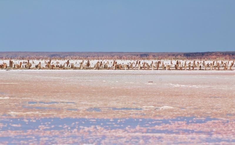 Соль, рассол и грязь розового озера стоковое фото rf